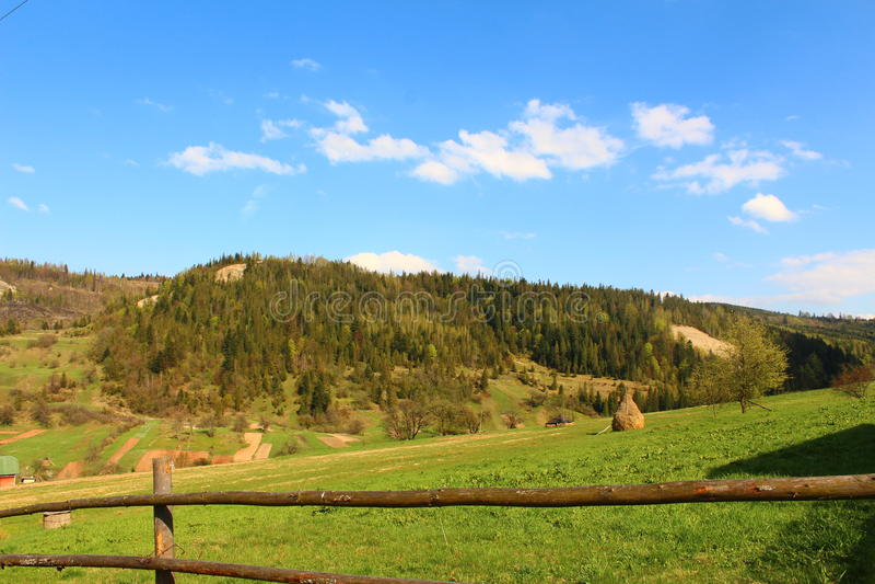 Schöne Ansichten der Karpaten-Berge und -wiese lizenzfreie stockfotos