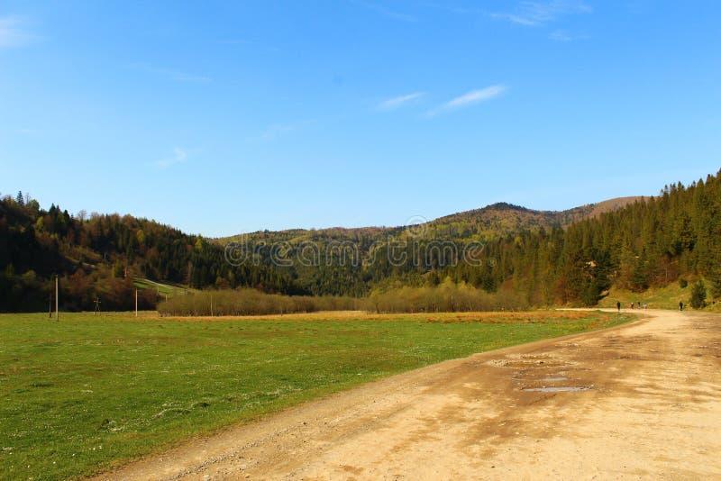 Schöne Ansichten der Karpaten-Berge und -wiese stockfotos