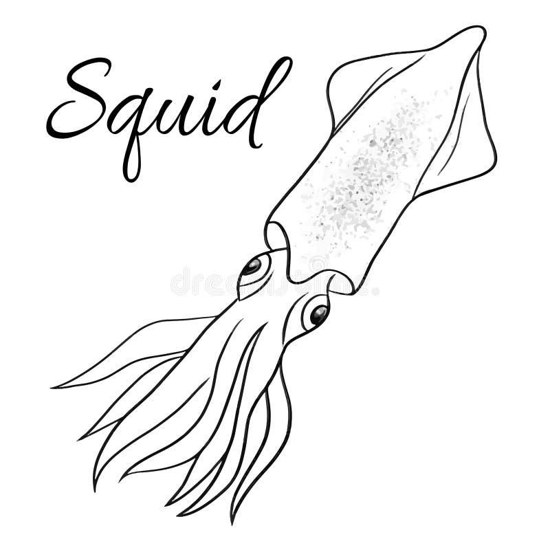 Schöne Art Animal Beautiful Print Tintenfischlinie Vektorgrafik Kunst vektor abbildung