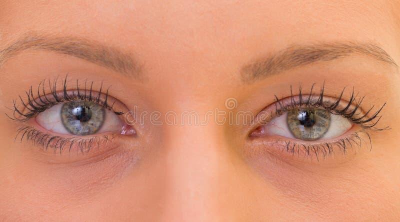 Schöne Augen stockfotos