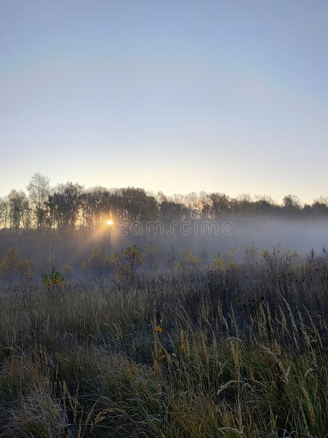 Schöne Autumn Fall-Landschaft Sonnenaufgang des starken Nebels über Feldern mit sichtbarem durchgehendem Nebel der Treetops lizenzfreies stockbild