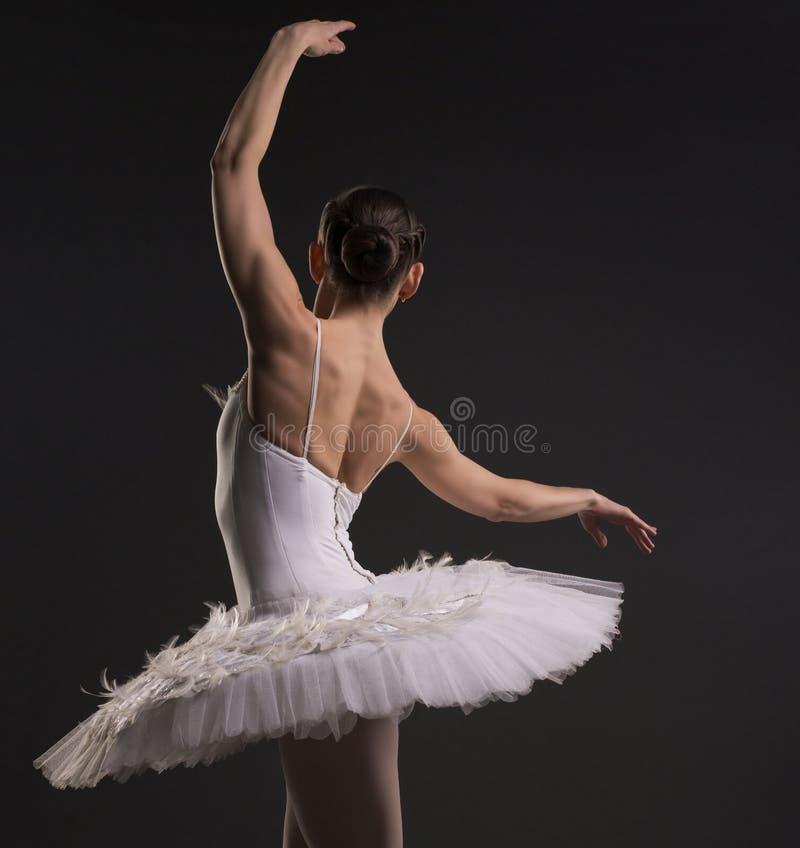 Schöne Ballerina Tanz mit schöner Aussicht lizenzfreie stockbilder