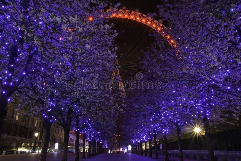 Schöne Baumbeleuchtung und London-Auge lizenzfreies stockfoto