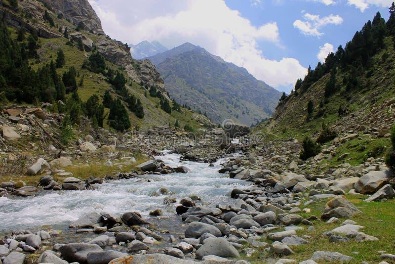 Schöne Berglandschaft, blauer Himmel, Bäume, Fluss lizenzfreie stockbilder