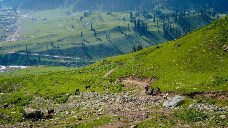Schöne Berglandschaft von Sonamarg, Jammu und Kashmir Staat, lizenzfreie stockbilder