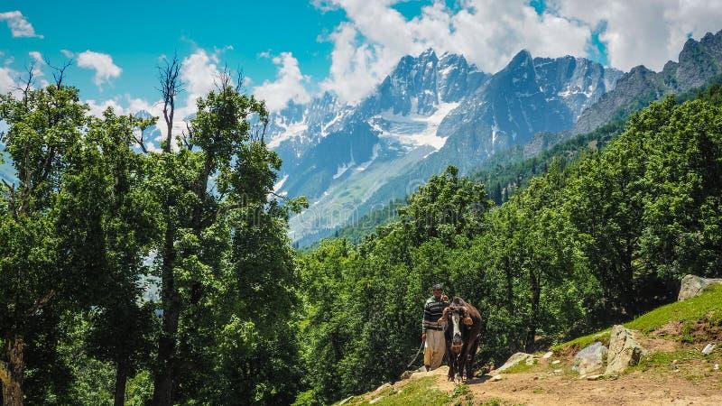 Schöne Berglandschaft von Sonamarg, Jammu und Kashmir Staat, lizenzfreie stockfotografie