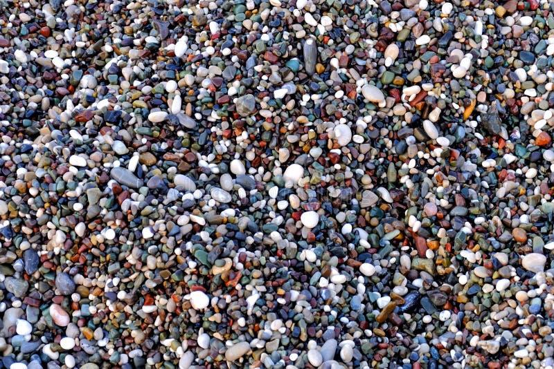 Schöne Beschaffenheit von nass kleinen mehrfarbigen Kieseln auf dem Seeufer, ein einzigartiges Muster für Entwurf, Hintergrund, T stockfoto