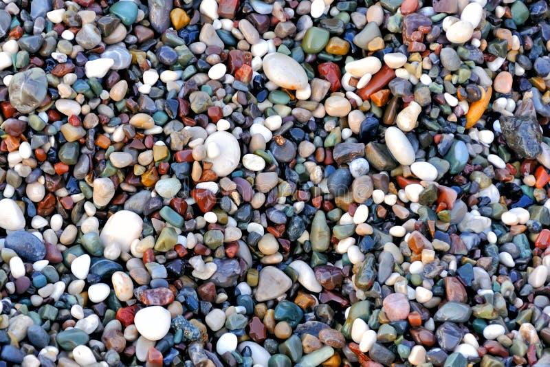 Schöne Beschaffenheit von nass mehrfarbigen Kieseln auf dem Seeufer, ein einzigartiges Muster für Entwurf, Hintergrund, Tapete lizenzfreies stockbild