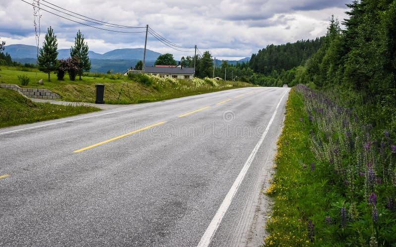 Schöne Beschaffenheit von Norwegen stockbilder