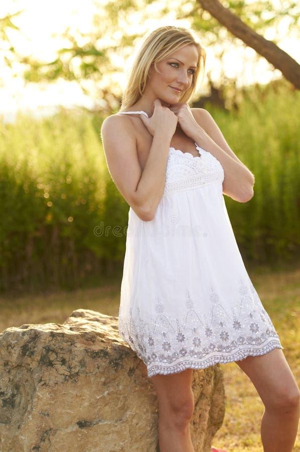 Schöne blonde sonnige Wiese lizenzfreies stockbild
