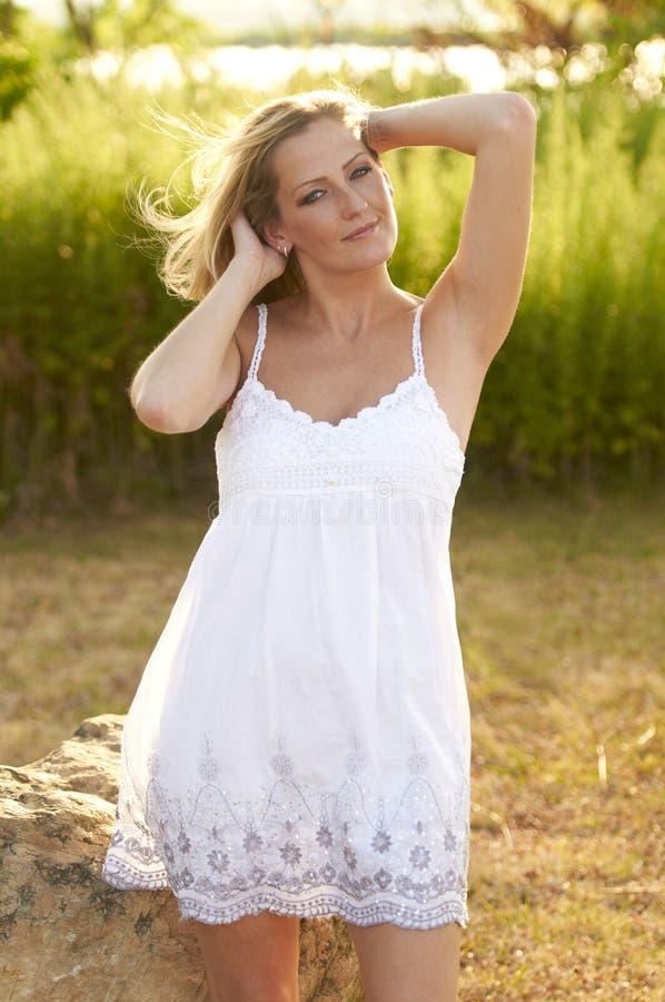 Schöne blonde sonnige Wiese lizenzfreie stockfotos
