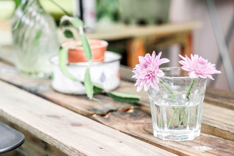 schöne Blume im Glas lizenzfreie stockfotografie