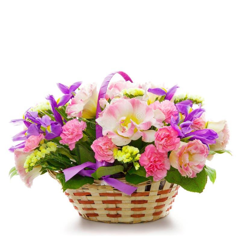 Schöne Blumen in einem Korb getrennt auf Weiß lizenzfreies stockbild