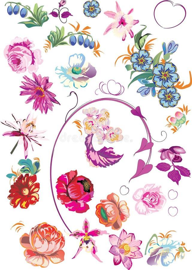 Schöne Blumen eingestellt lizenzfreie abbildung