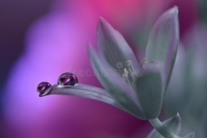 Schöne Blumen reflektierten sich im Wasser, künstlerisches Konzept Ruhige abstrakte Nahaufnahmekunstphotographie Blumenphantasied