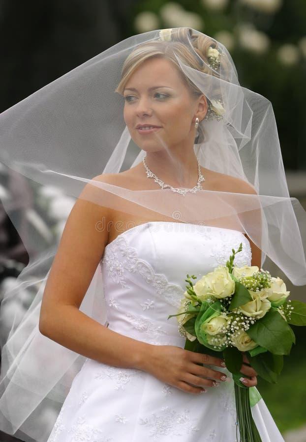Schöne Braut lizenzfreie stockfotos