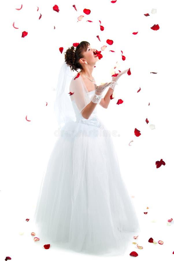 Schöne Braut auf Fußboden unter roten rosafarbenen Blumenblättern lizenzfreies stockfoto