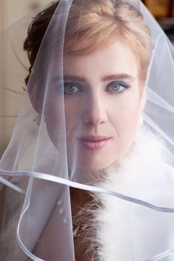 Schöne Braut in einem Schleier lizenzfreie stockfotos