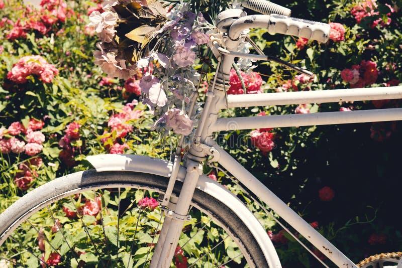 Schöne bunte Blumen auf weißem Fahrradkonzept der Hochzeit und des Valentinsgrußes stockfotos