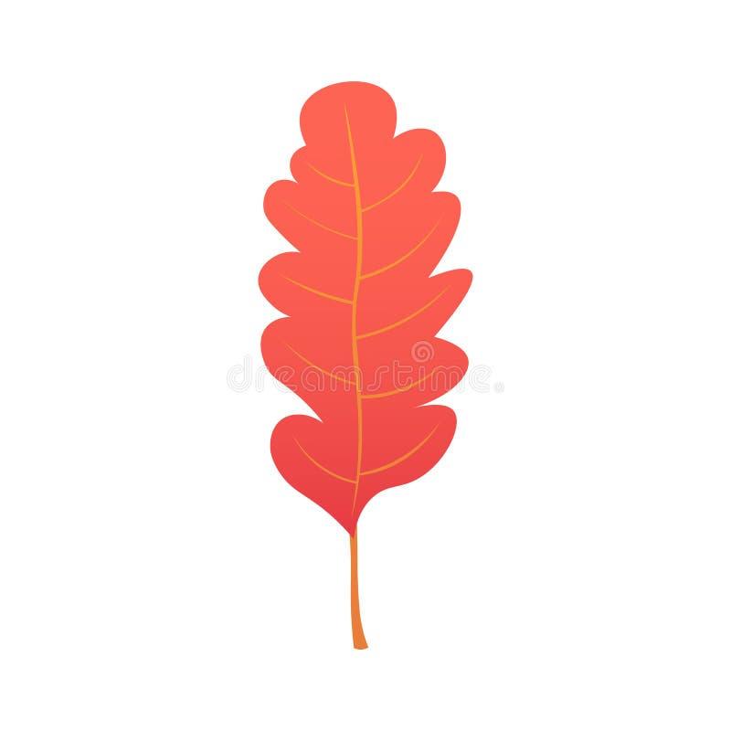Schöne bunte Herbstblätter der Ansammlung getrennt auf weißem Hintergrund Abbildung vektor abbildung