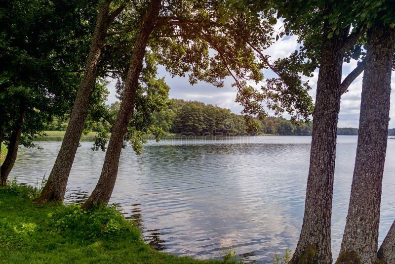 Schöne bunte Sommerlandschaft, die Flussbank in den Vorderteilen lizenzfreie stockfotos