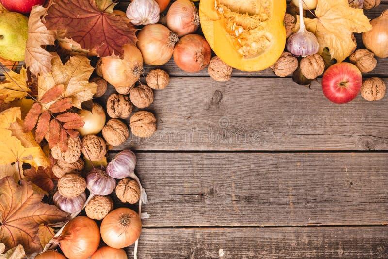 Schöne, bunte Zusammensetzung von Herbsternte Gemüse, Früchte und Blätter vereinbart auf der linken Seite Freiexemplarraum lizenzfreies stockfoto