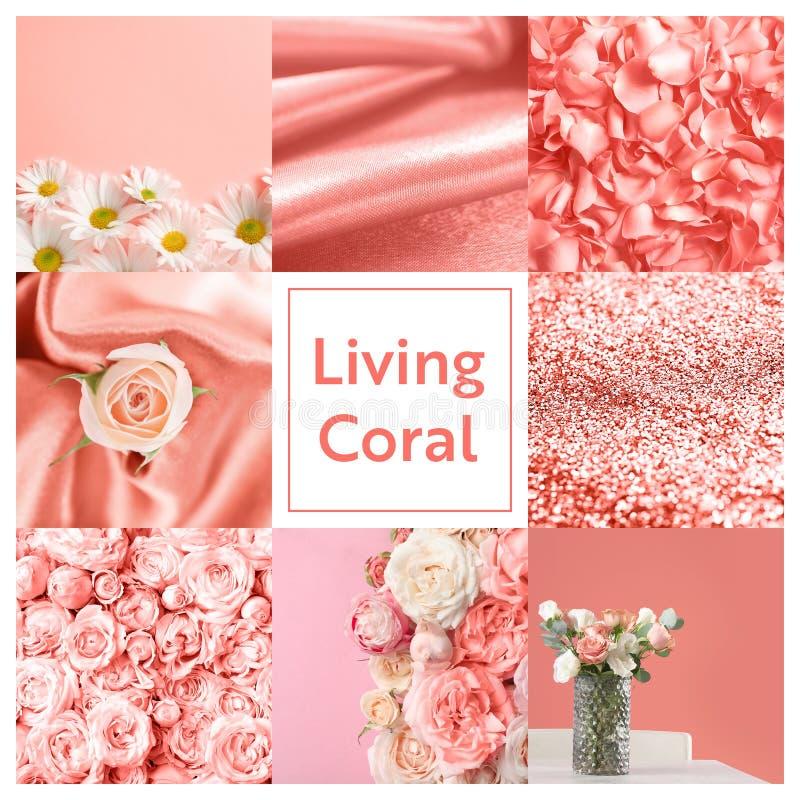 Schöne Collage mit lebender korallenroter Farbe stockfotos