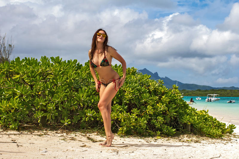 Schöne Dame, die gegen eine tropische Landschaft aufwirft lizenzfreie stockfotos