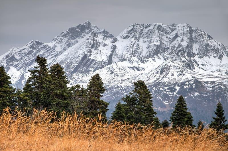 Schöne drastische szenische schneebedeckte Bergspitzeherbstlandschaft Agepsta-Spitze, Kaukasus, Sochi, Russland stockbild