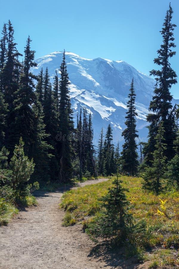 Schöne, einfache Burroughs-Bergwandernspur liefert großartige Ansichten stockfotografie