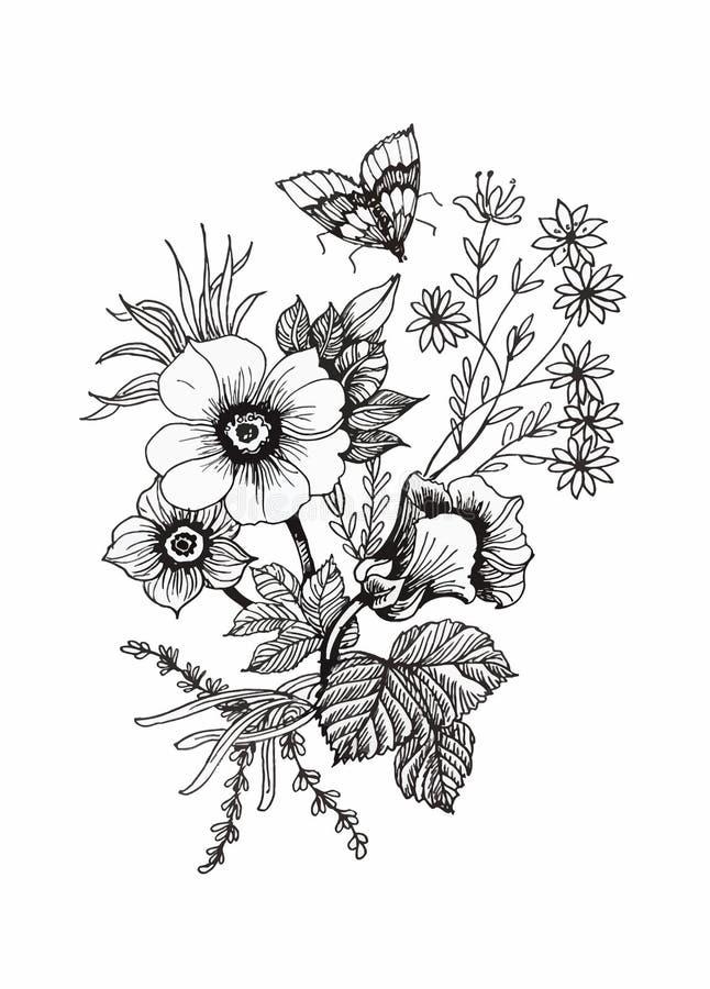 Schöne einfarbige, Schwarzweiss-Blume lokalisiert Von Hand gezeichnete Tiefenlinieanschläge stock abbildung