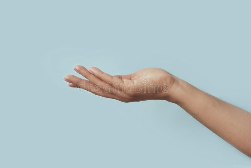 Schöne, elegante und gepflegte Hände im Hintergrund Hautpflegekonzept lizenzfreie stockfotos