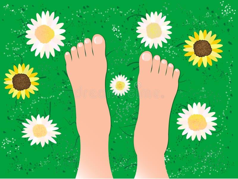 Schöne Füße auf dem Gras vektor abbildung
