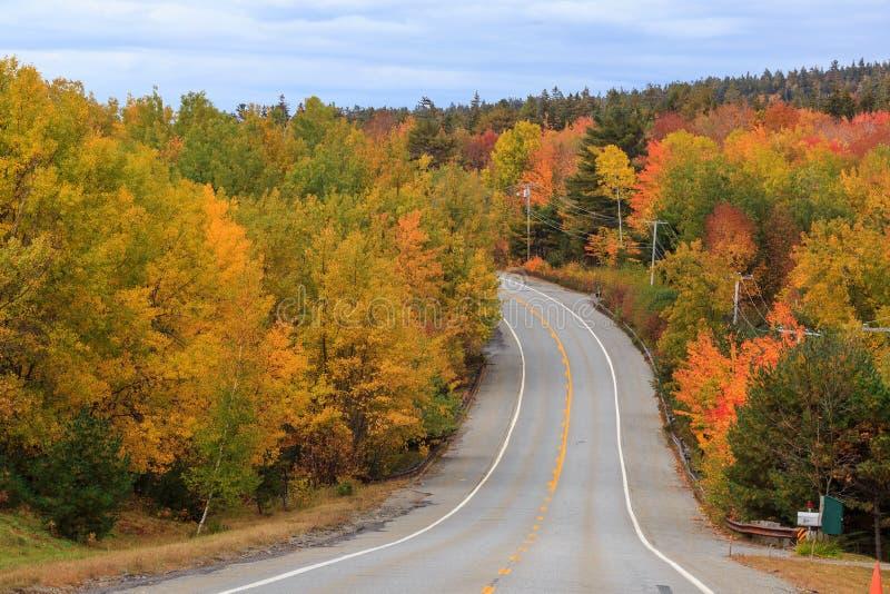 Schöne Fallfarben des Acadia-Nationalparks stockfotos
