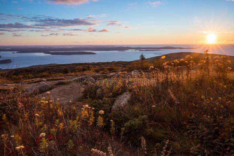 Schöne Fallfarben von Acadia, Maine lizenzfreies stockbild