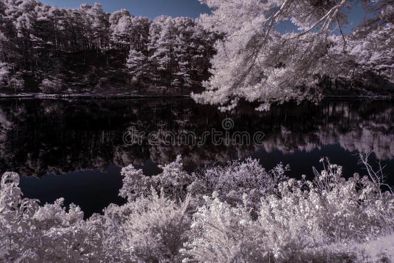 Schöne falsche Farbsurreales Infrarotlandschaftsbild von See a stockfotografie