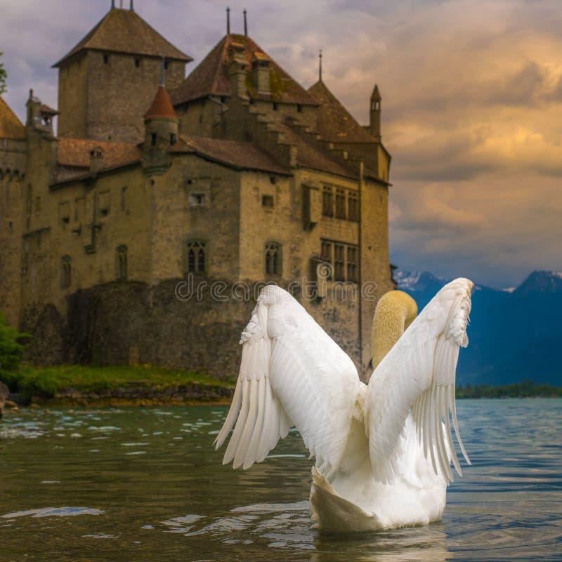 Schöne Fantasiefotos des Schwans und des Schlosses stockfoto