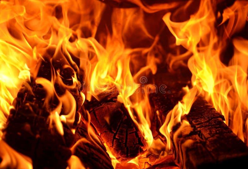 Schöne Feuerflammen nahaufnahme Flamme des Feuers Beschaffenheit des brennenden Holzes und der Flamme stockfotografie