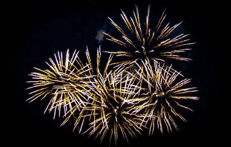 Schöne Feuerwerke von goldenen Lichtern im nächtlichen Himmel lizenzfreie stockfotos