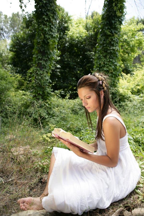 Schöne Frau, die ein Buch im Wald, Natur liest stockfotografie