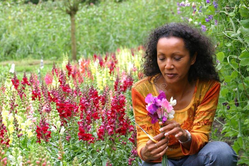 Schöne Frau im Blumengarten stockfotos