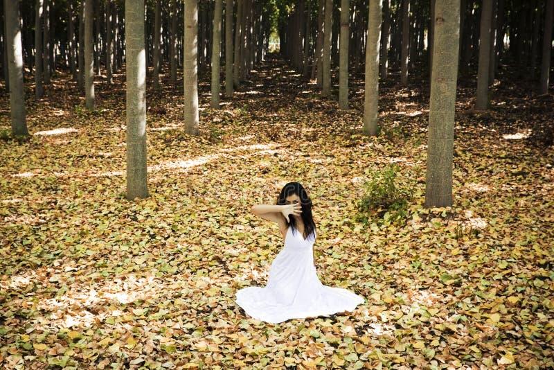 Schöne Frau im Wald lizenzfreie stockbilder
