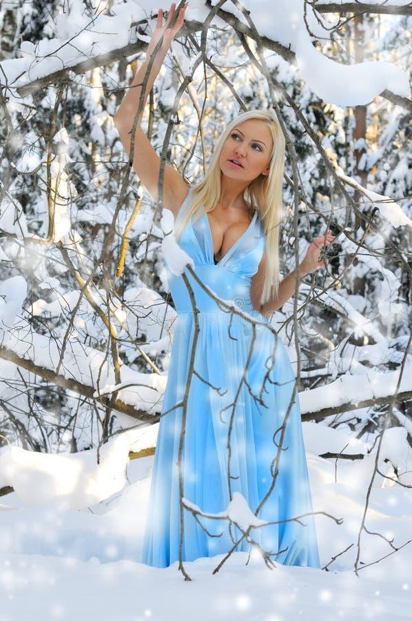 Schöne Frau im Winterwald. stockfoto