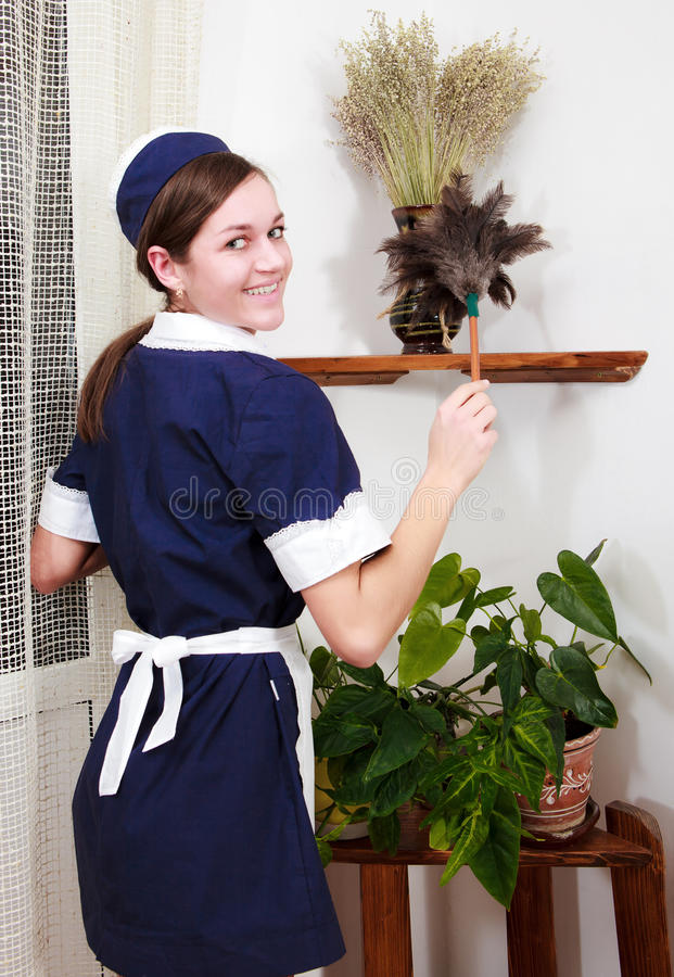 Schöne Frau mit Reinigungsschleife lizenzfreie stockbilder