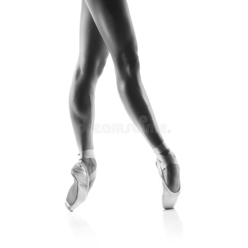 Schöne Balletttänzerbeine lokalisiert auf Weiß lizenzfreie stockbilder