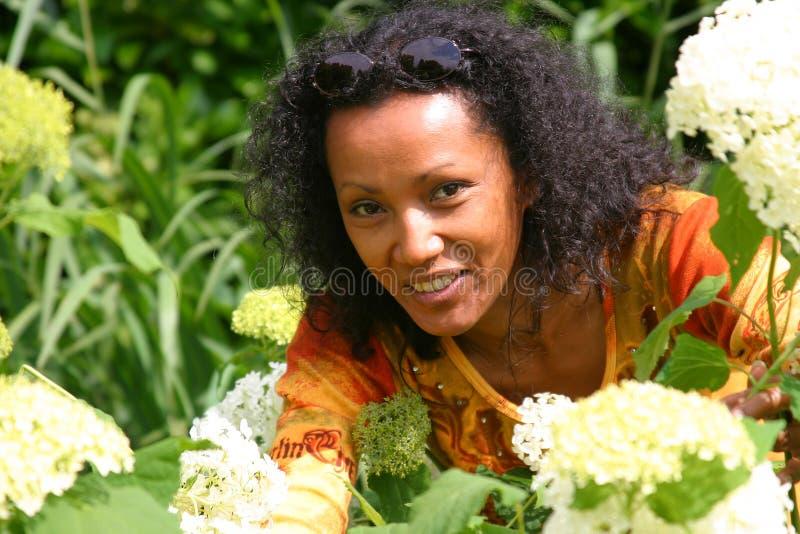 Schöne Frauensammelnblumen stockbild