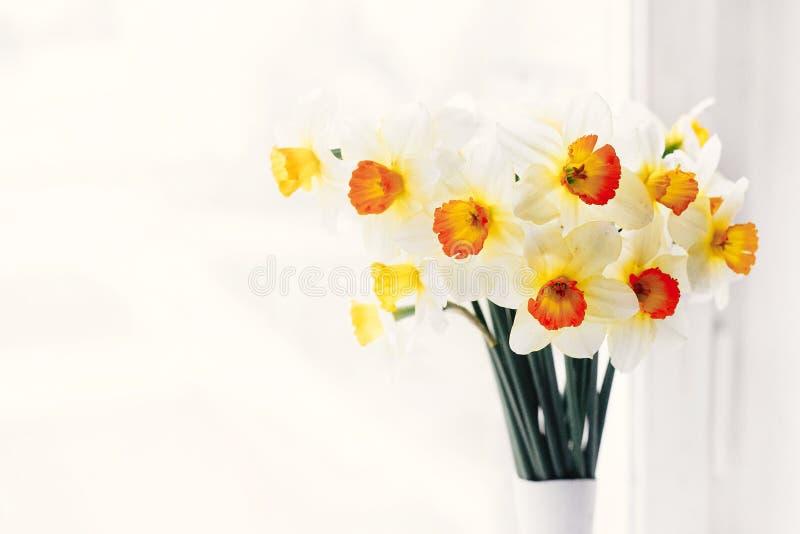 Schöne frische Narzissen im Licht im stilvollen modernen Vase auf whi stockbilder