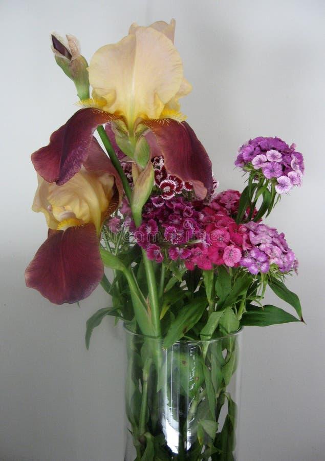Schöne Gartennelke blüht in einem Vase auf einer Tabelle Blumenstrauß der violetten, purpurroten und rosa Mehrfarbenblume Dekorat lizenzfreie stockbilder