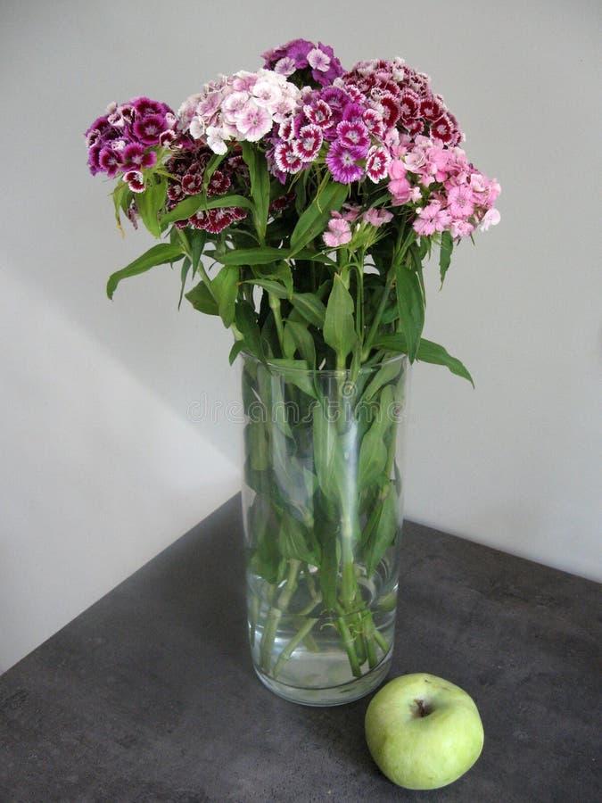Schöne Gartennelke blüht in einem Vase auf einer Tabelle Blumenstrauß der violetten, purpurroten und rosa Mehrfarbenblume Dekorat stockbilder
