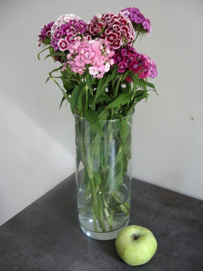 Schöne Gartennelke blüht in einem Vase auf einer Tabelle Blumenstrauß der violetten, purpurroten und rosa Mehrfarbenblume Dekorat stockfotos